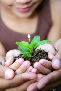 Grow more than a garden